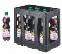 Ensinger Direktsaft Apfel-Johannisbeer-Schorle 11 x 0,5 Liter (PET/Mehrweg)
